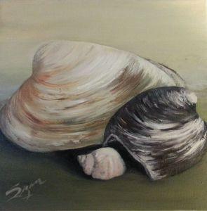 SeashellsontheseashoreA